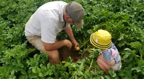 agricultura juicio
