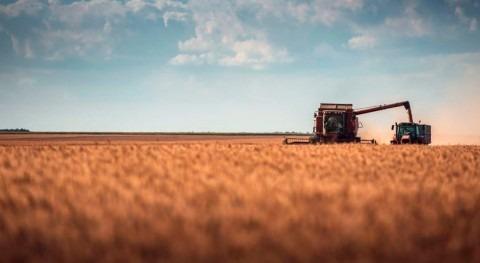 superficie regada España se mantuvo estable 2020, superando 3,8 millones hectáreas