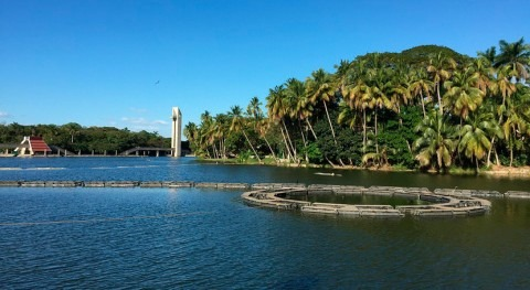 Ciencia combatir inundaciones Tabasco