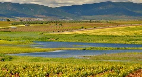 recuperación dominio público hidráulico Parque Nacional Daimiel, más cerca