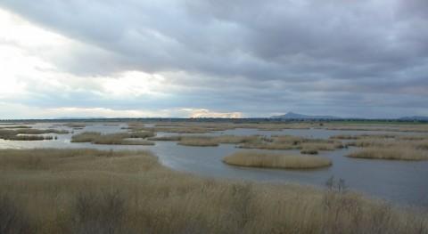 SEOBirdLife recuerda que mejor restauración humedales es poner fin destrucción