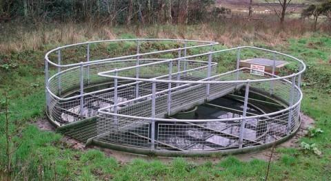 Consell aprueba cinco convenios universidades investigaciones recursos hídricos