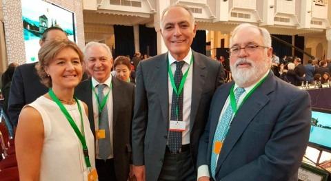 """Isabel García Tejerina: """"Debemos trabajar todos juntos implementación Acuerdo París"""""""