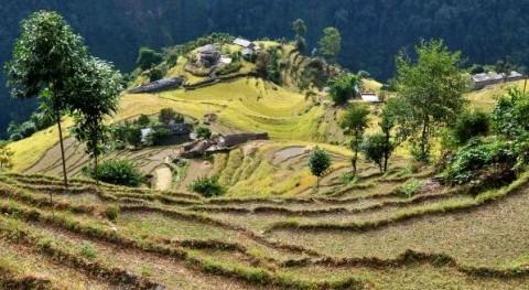 Nuevo informe Naciones Unidas soluciones basadas naturaleza