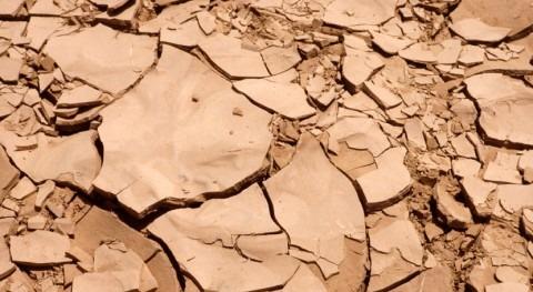 Cercano Oriente y África Norte necesitan cambio radical gestión sequías