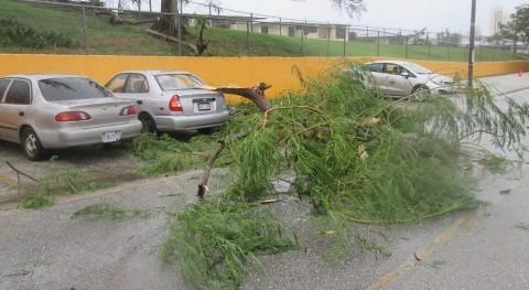 Decenas muertos y cientos heridos paso tifón 'Hagibis' Japón