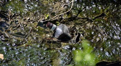 Tipos contaminantes agua
