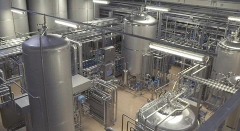 Proceso optimización cervecera Appenzeller Bier