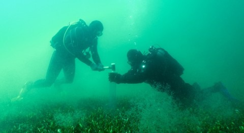 Investigadores UPCT y UAB analizan consecuencias presión humana Mar Menor