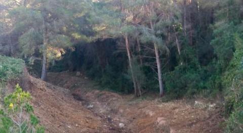 Retirada vegetación invasora torrente que transcurre Baix Penedès y Tarragonès