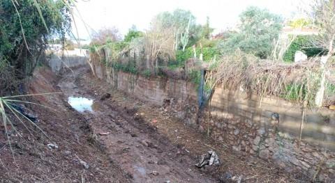Erradicada vegetación invasora torrente Vilanova y Geltrú Cataluña