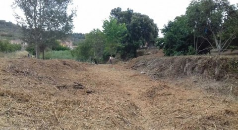 Cataluña retira vegetación acumulada tramo torrente que transcurre Valls