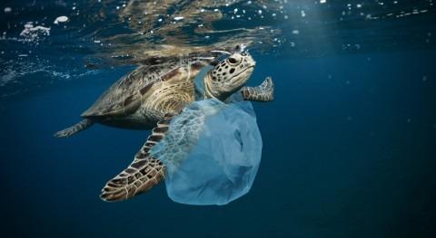 IPCC considera urgente reducir efectos cambio climático océanos y capas hielo