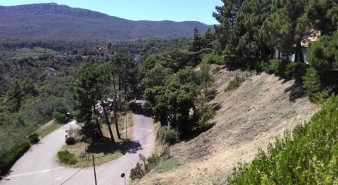 Cataluña impulsa actuaciones mantenimiento forestal embalses prevenir incendios