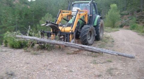 Licitada actuación prevención incendios forestales montes provincia Lleida