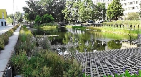 "Amianto, agua y soluciones naturales, historia "" Tripode"""