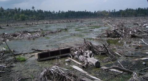 Fallecen al menos 9 personas inundaciones que asolan isla indonesia Sumatra