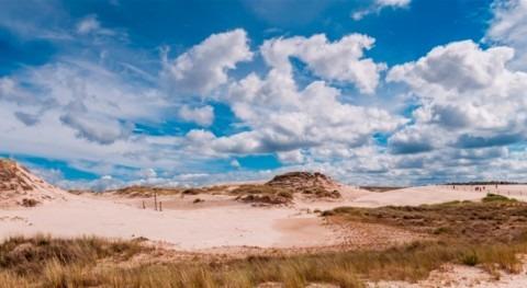nuevo viaje virtual destaca beneficios ecosistema clave: turberas