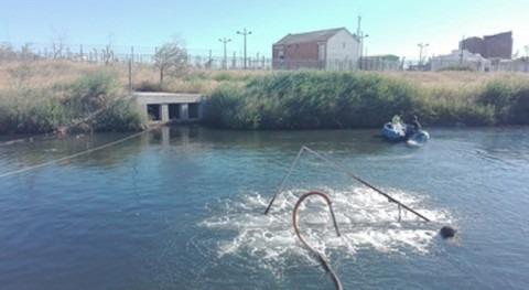 Valencia toma medidas urgentes mortandad peces tramo final río Turia
