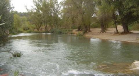 Voluntarios Grupo Aguas y Fundación Limne limpiarán Turia ricino