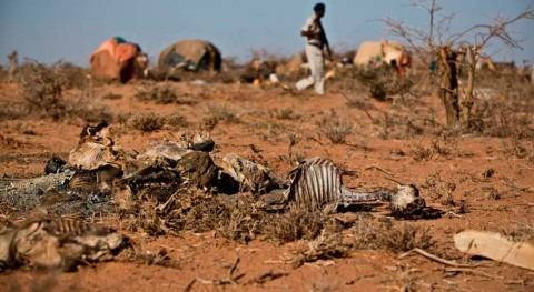 riesgo hambruna sequía se aleja Somalia gracias donaciones