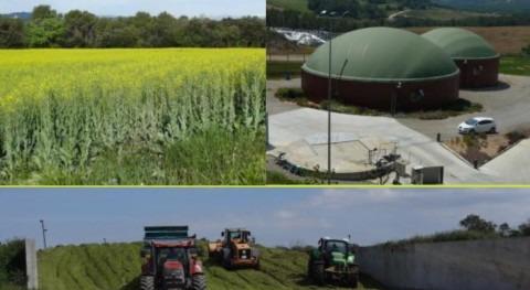 """Jornada """"Uso cultivos captadores limitar lixiviación nitrógeno y optimizar producción biogás"""""""