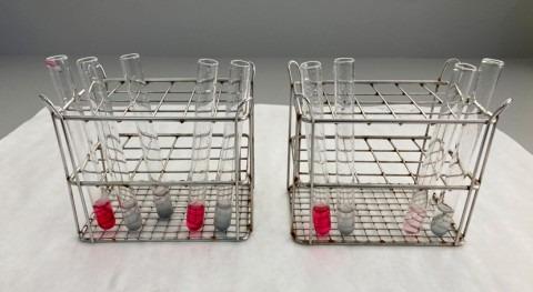 UPCT elimina más 75% nitratos agua pruebas proyecto LIFE-DESIROWS