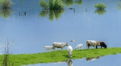 """diques contención inundaciones no son suficientes """"ganar guerra al agua"""""""