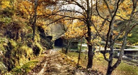 CHMS avanza retirada escombros río Oza