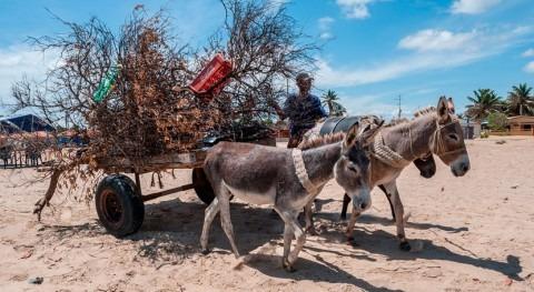 falta agua potable Venezuela agrava desnutrición aguda niños