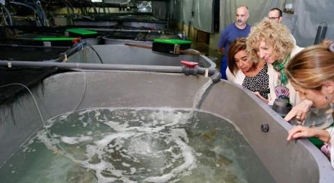 Cantabria aprovechará investigaciones lucha cambio climático IEO