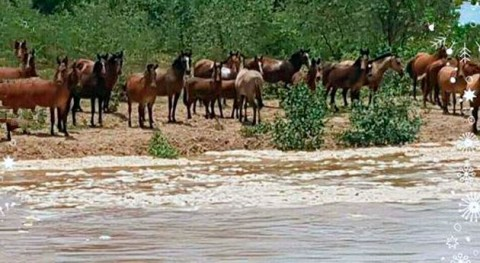 río Pilcomayo ya recorre más 100 km territorio paraguayo