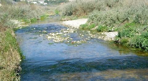 Autorizado suministro temporal 15 hm3 agua usuarios Vinalopó-Alacantí