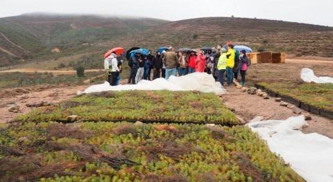 Estudiantes visitan trabajos repoblación forestal que CHT hace embalse Alcorlo