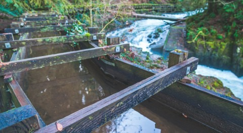 Principales oportunidades empresas sector agua estado Washinton DC