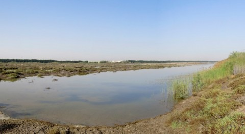 Emiratos Árabes Unidos designa Wasit Nature Reserve como nuevo sitio Ramsar