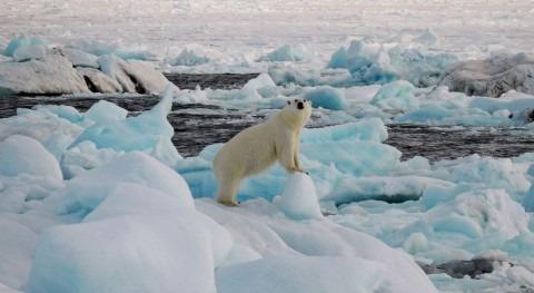 Clima extremo, reto ciencia
