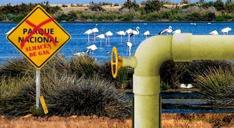 Nace Iniciativa Social Doñana proyectos gas