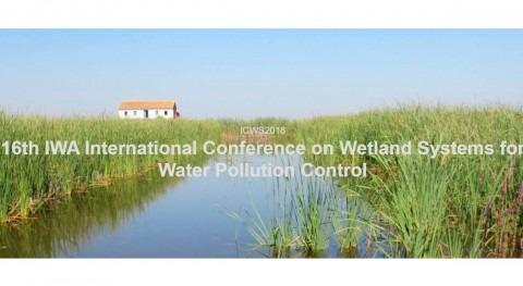 DAM, patrocinador 16 Conferencia Internacional Grupo Especialistas humedales IWA