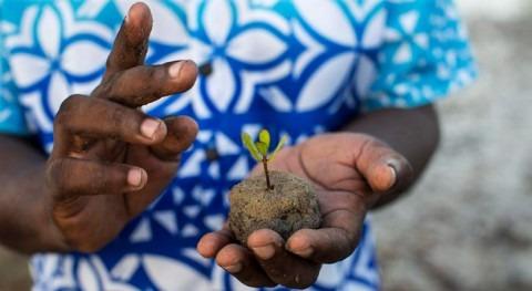 héroes manglares Kenia