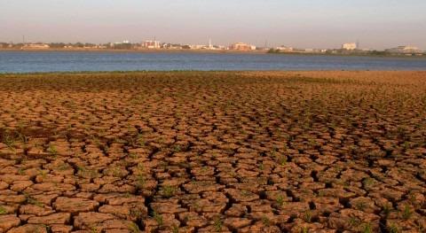 Cambio climático: solución empieza hoy, no mañana