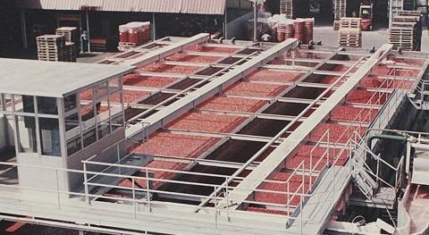 bomba Flygt Xylem ayuda lavar 250.000 toneladas tomates al año