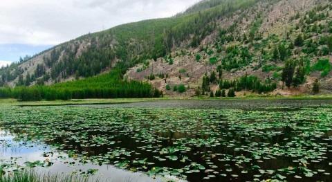 brecha acceso al agua EE.UU: más 2 millones aún agua corriente y saneamiento