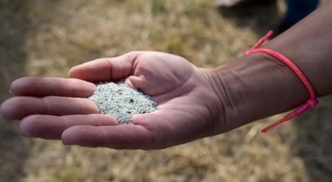 CSIC estudia reutilizar zeolitas potabilización agua como fertilizantes agrícola