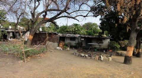 Zimbabue pide 1.400 millones euros paliar hambruna causada sequía