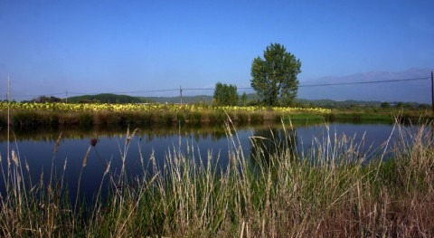 CHT autorizará Regantes presa Fraguas tomar agua Rosarito campaña
