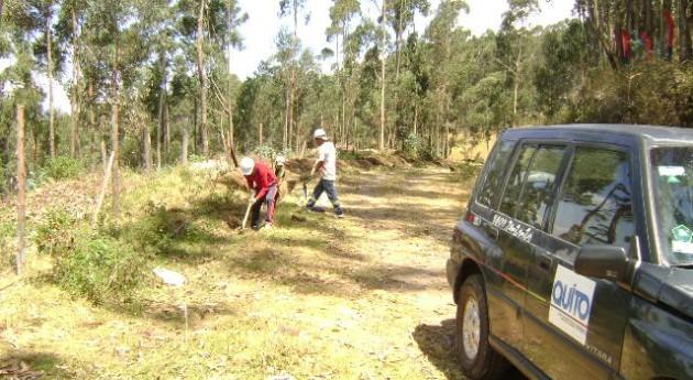 EPMAPS trabaja en la conservación de las laderas del Eje Pichincha-Atacazo