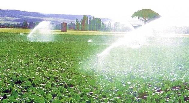 Modelos simulación cultivos predicen efectos Niño y Niña España