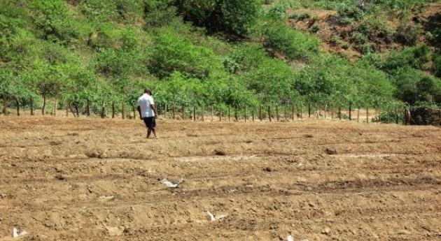 Canal riego fronterizo Ecuador-Perú irriga 3.000 hectáreas cultivos