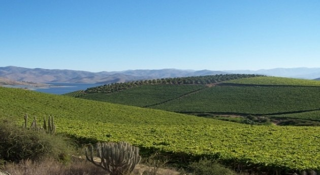 Comisión Nacional Riego Chile abre concurso mejora calidad aguas